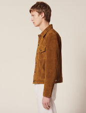 Split Leather Trucker Jacket : Blazers & Jackets color Camel