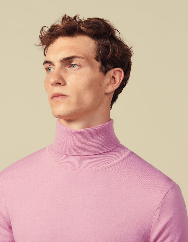 Roll neck wool sweater : Sweaters & Cardigans color Pink